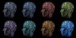 Neurodiversity has many unique faces